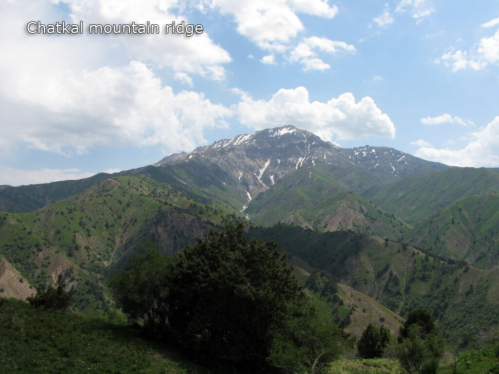 Trekking in Uzbekistan along Chatkal mountain ridge in Ugam-Chatkal national park