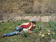 Uzbekistan tulips watching horse riding  through Paltau valley in Ugam-Chatkal national park