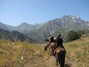 Uzbekistan mountain horse riding to Patandazboshi peak in Ugam-Chatkal national park